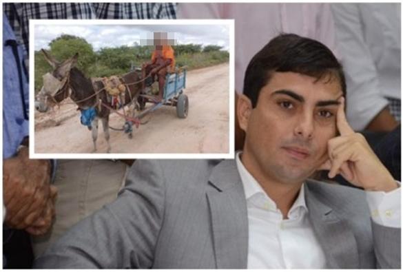 Deputado apresenta projeto para proibir o uso de animais em carroças na Bahia