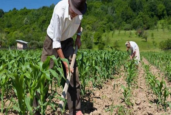Trabalhadores rurais que quiserem se aposentar não irão precisar de sindicatos para obtenção de declaração de atividade rural