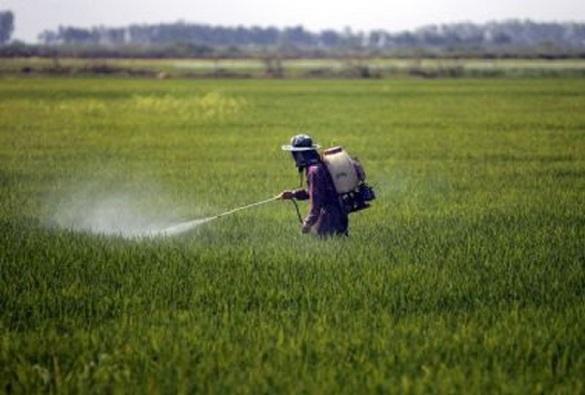 MP diz que pelo menos 14 cidades baianas não checam presença de agrotóxico na água