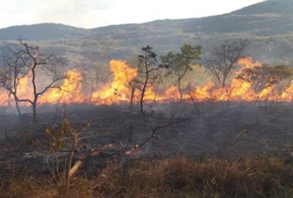 Bombeiros controlam incêndio há 10 dias em Boquira; outras 4 cidades registram fogo