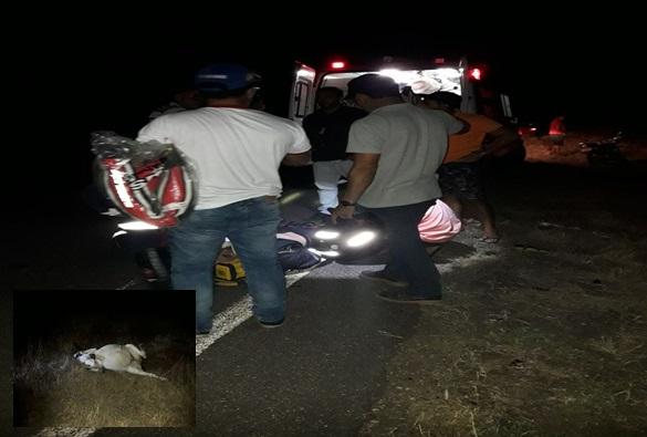 Gerente de agência bancária de Dom Basílio sofre acidente na BA-148 ao colidir motocicleta com animal solto na pista