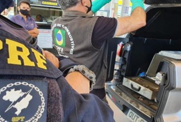 Ibama e PF deflagram operação contra tráfico de animais na Bahia, DF mais 13 estados