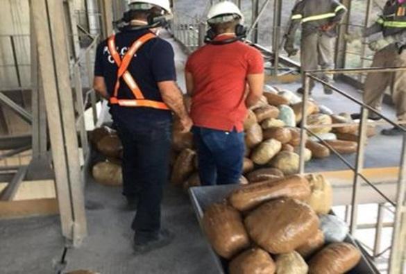 Livramento: Droga apreendida em fazenda é incinerada em Brumado