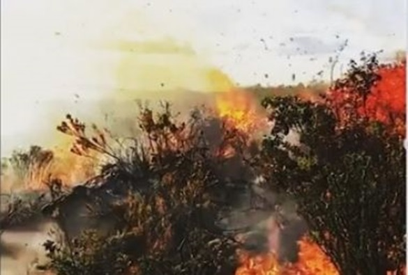 Incêndio que atinge Serra da Tromba na Chapada já dura três dias