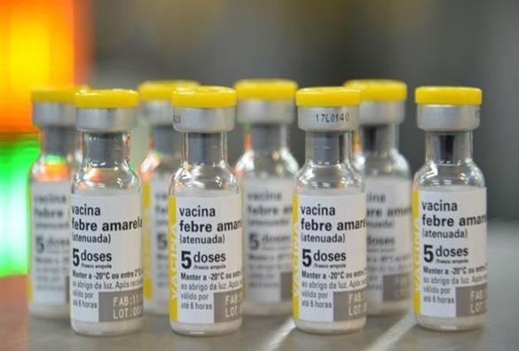 Não há registro confirmado de febre amarela urbana no Brasil, diz ministério