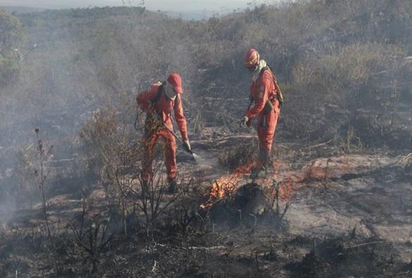 Governo estadual investe mais de 6 milhões de reais em incêndios florestais