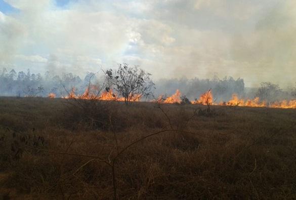 Vitória da Conquista: Incêndio de grandes proporções destrói vegetação e atinge área da Uesb